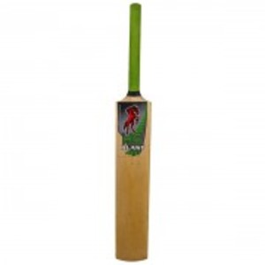 Cricket Bat-Blast 400