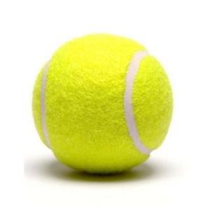 Cricket Tennis Balls Parrot Green