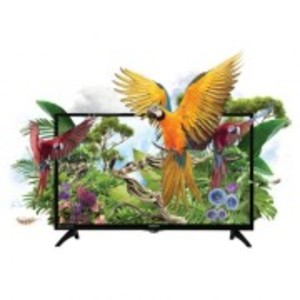 Macaw 32 Inches HD Ready LED TV - Brand Warranty