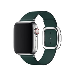 Apple 40mm Forest Green Modern Buckle Band - Medium