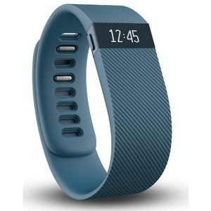 Fitbit Charge Wireless Activity Wristband Slate