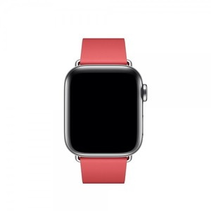 Apple 40mm Peony Pink Modern Buckle Band- Large