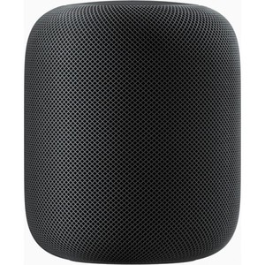 Apple HomePod Space Gray - MQHW2