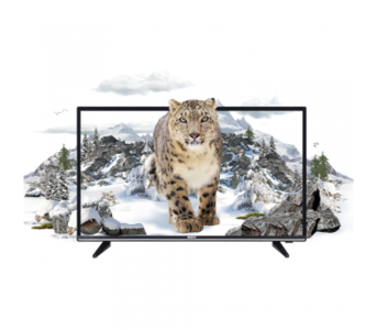 "Orient 32"" Leopard 32 HD READY LED TV (1 Year Official Warranty)"