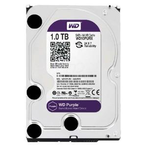 Western Digital Purple (Surveillance) Series 1TB (64MB Cache 5400 RPM)