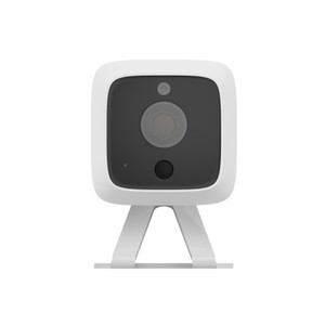 Iris Indoor and Outdoor Camera
