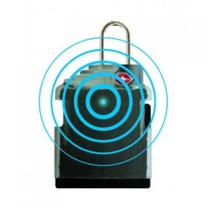 Merlin Smart Lock