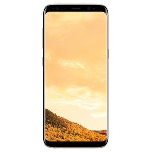 Samsung Galaxy S8 Plus 64GB (Maple Gold)