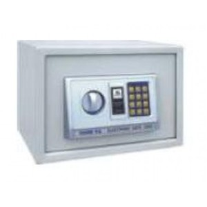 Safewell Digital EA25