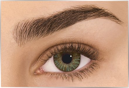 Freshlook Colorblend - Green (-2.5) - Single Contact Lens