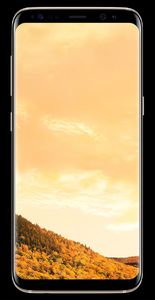 Samsung Galaxy S8 Plus (4G  64GB  Maple Gold) With 1 Year Warranty