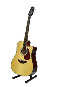 Takemine Italian 41 Semi Acoustic Guitar (Natural)