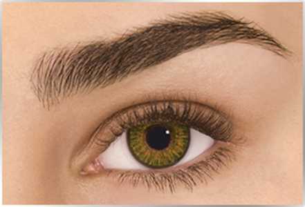 Freshlook Colorblend in Pure Hazel (-6.5) - Single Contact Lens