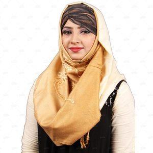 Pashmina Hijab For Women Pm011 Brown