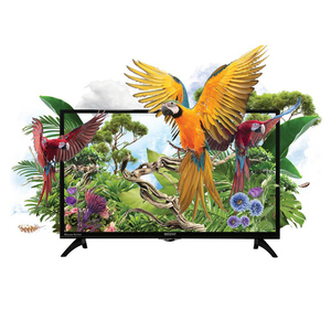 Orient Macaw HD LED TV 32 Inches Black