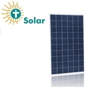 Tesla 160 Watt Poly Solar Panel - Project Grade (2 Year Warranty)