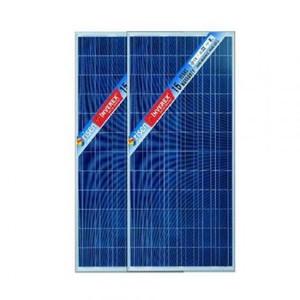 Inverex Risen 270 Watt Poly Solar Panel