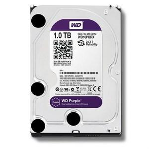 WD Purple 1TB Surveillance Hard Disk Drive  SATA 3.5 Inch  WD10PURX