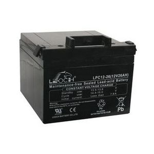 Leoch Battery in Black Gray