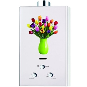 Sogo 6 LTR Global Series Flora Water Geyser