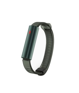 Misfit Ray Fitness Tracker with Green Sport Band (Forest Green)