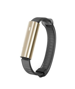 Misfit Ray Fitness Tracker with Black Sport Band (Stainless Steel Gold)