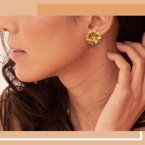 Waks Pk Classic Gold Color Crystal Earrings For Women (0146)