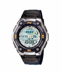Casio Sports Mens Watch (AQW101B-2AV)