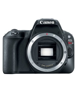 Canon EOS Rebel SL2 DSLR Camera Black (Body Only)
