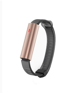 Misfit Ray Fitness Tracker with Black Sport Band (Rose Gold)