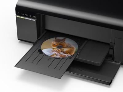 Epson Inkjet Photo Printer (L805) - Without Warranty