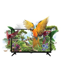 Orient Macaw 32 HD LED TV