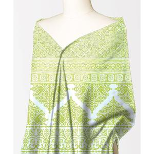Alkaram Studio Silver Collection Green Lawn 1PC Unstitched Suit For Women -A132222101
