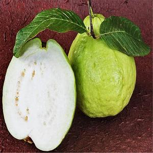 30 Pcs/Bag Guava Seeds, Organic Vegetable Fruit Seeds, Bonsai Guava Tree Plant Pot For Home Garden