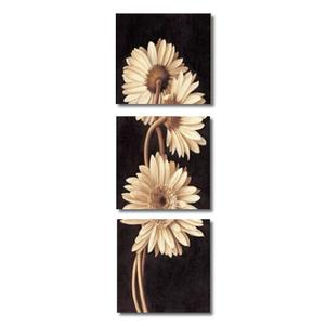 (photo)3pcs Modern Art Painting Canvas Print Wall Pictures Home Room Decor Unframed # 60*60cm
