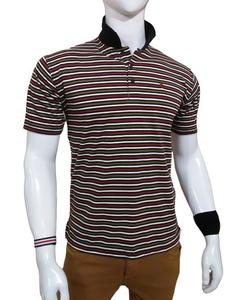 Multicolor Polo Shirt for Men, 1612151981820MBWG
