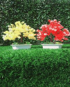 Pack of 2 Yellow + Red Artificial Tree