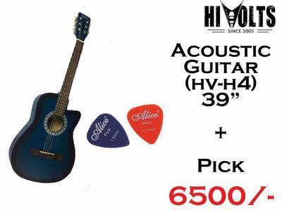 Acoustic Hi Volts Guitar H4