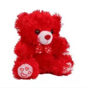 Stuffed Teddy Bear Gift