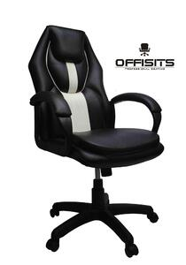 Gaming Chair - Taiwan based - 1 year warranty