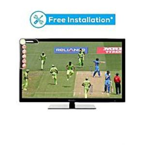 Nobel 32 Inch HD Ready LED TV - Black