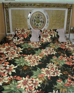 Multicolour Printed Double Bedsheet With Pillow Cover