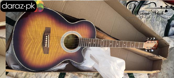 Rogers Semi Acoustic Electric Guitar ( Real Pics Attached ) 45% Discount Offer Limited Time