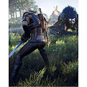 SonyThe Witcher 3: Wild Hunt  ? Playstation 4