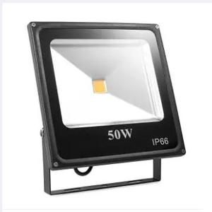 50 W Flood Light